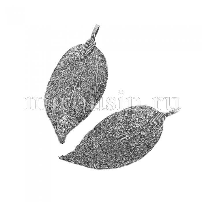 Кулон Натуральный Лист, Гальваника, Концевик из Железа, Цвет: Черный, Размер: 50~80x20~35x1мм, Отверстие 3x6мм, (УТ100016325)
